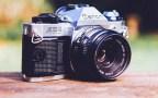 Neues Objektiv: Canon 70-300mm f4-5.6 EF, IS, USM im Tierpark Hellabrunn